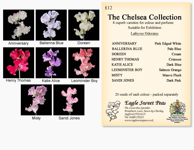 Chelsea Seed Collection