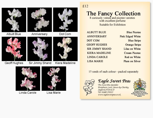 Fancy Seed Collection