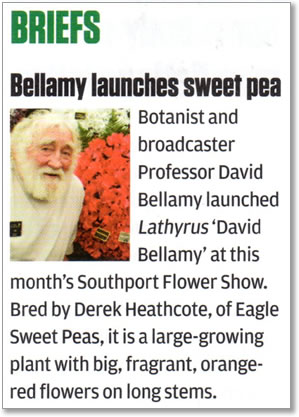 An article in The Horticultural Weekly about the new 'David Bellamy' sweet pea