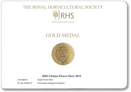 Our Chelsea Gold Medal awarded at the Chelsea Flower Show 2019