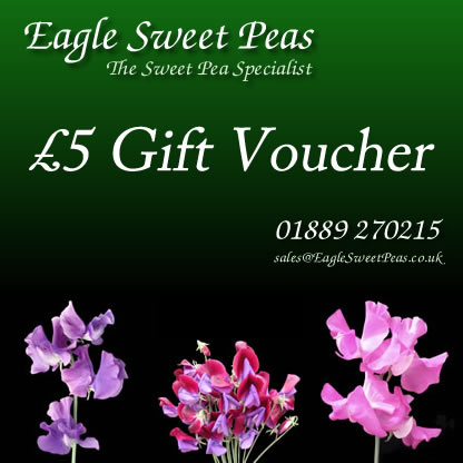 Eagle Sweet peas Gift Voucher